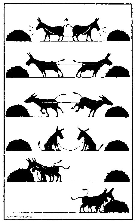 cooperation-two-mules